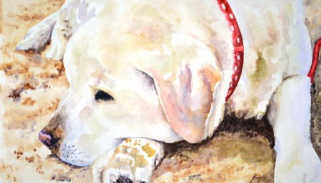watercolour labrador