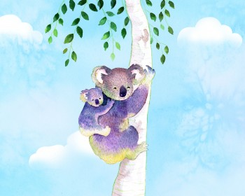 Koala_Illustration