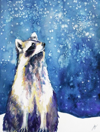 Raccoon_in_watercolour